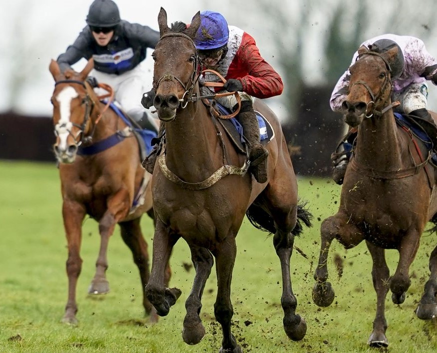 ROSE OF ARCADIA - A welcome winner at Wincanton
