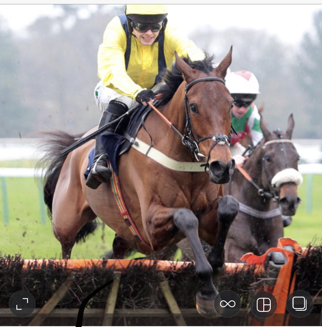 BEAUFORT WEST - wins at Fontwell Park