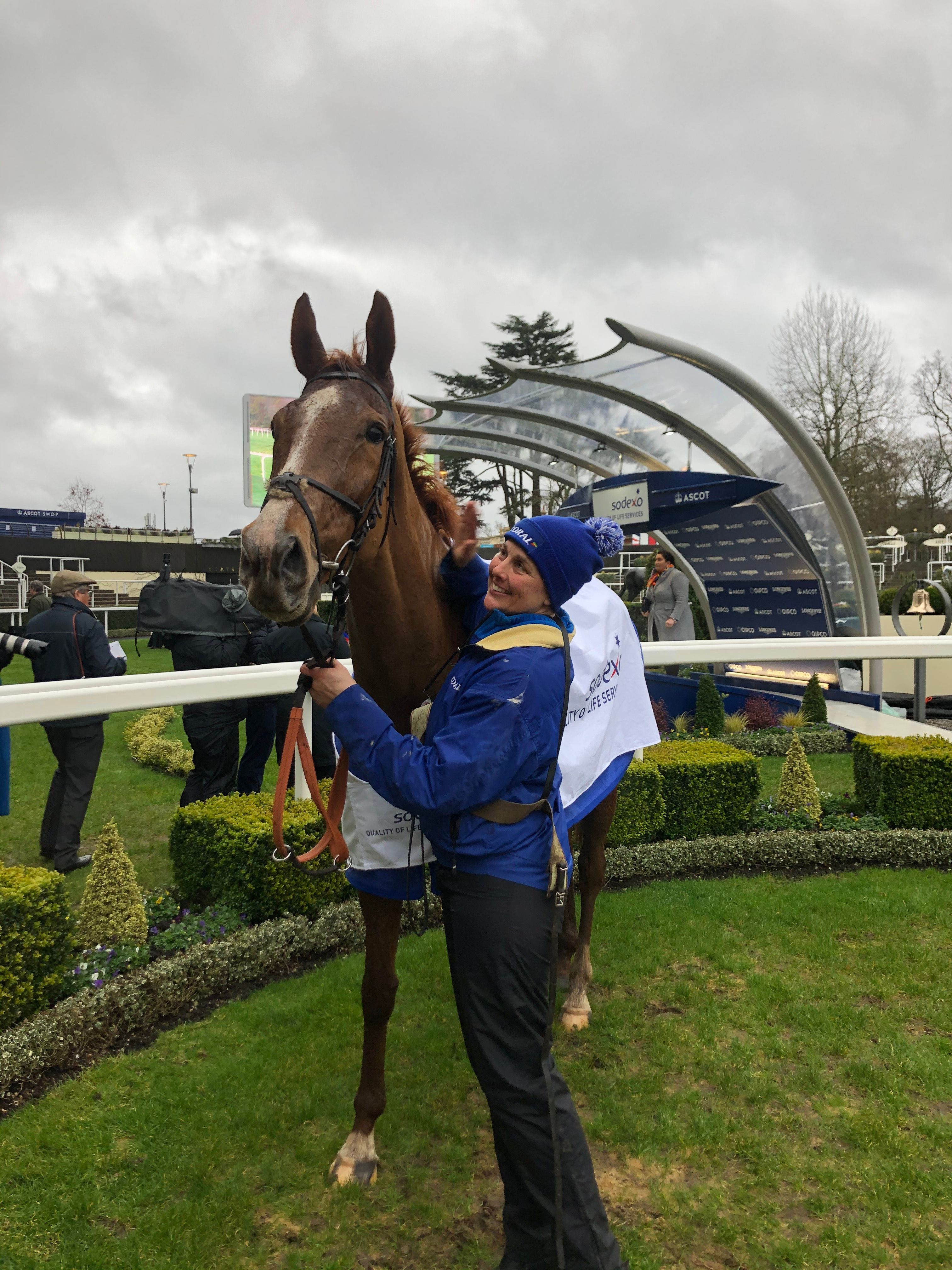 COPPERHEAD - lands Grade 2 Reynoldstown Chase at Newbury